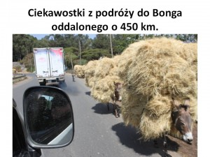 etio-005